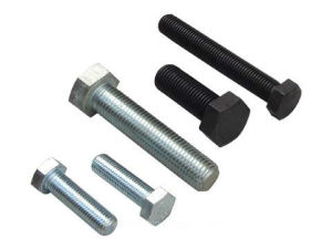 ANSI/ASTM/ASME B18.2.1 Hex Bolts (WITHOUT WASHER FACE) with Nut pictures & photos