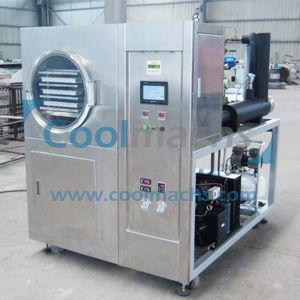 Pilot Vacuum Freeze Dryer for Food/Lab Vacuum Freeze Dryer pictures & photos