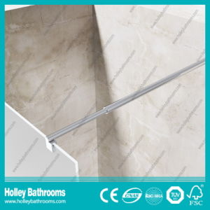 European Style Walk-in Door Ground Glass Simple Shower Screen (SE716H) pictures & photos