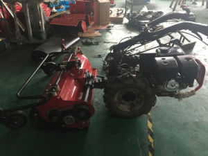 Agriculture Tractor Diesel Walking Tractor (HYT01) pictures & photos