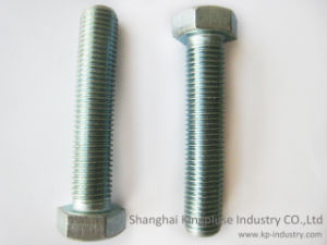 Galvanized Hex Cap Screw Manufacturer pictures & photos