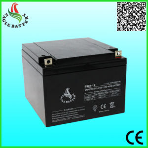 12V 24ah AGM Lead Acid Battery for Emergency Lighting pictures & photos