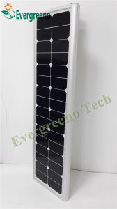 Integrated Solar Garden Light with Three Years Warranty pictures & photos