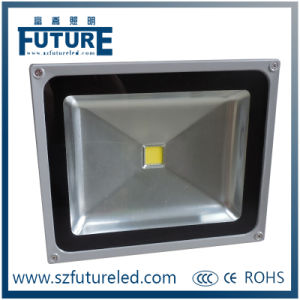 100W COB LED Flood Light for Outdoor Lighting (F-N1-100W) pictures & photos