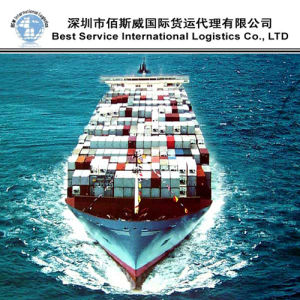 International Ocean Logistics, Shipping Freight Forwarder, Full Container Service (20′′40) pictures & photos