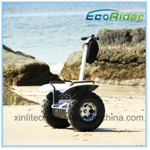 Hot Sale Personal Mobility Transporte, 2 Wheels Scooter for Adults of Big Wheels Model Esoi pictures & photos