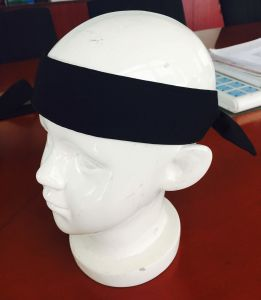 Sports Head Wrap / Headband / Head Belt for Youga pictures & photos