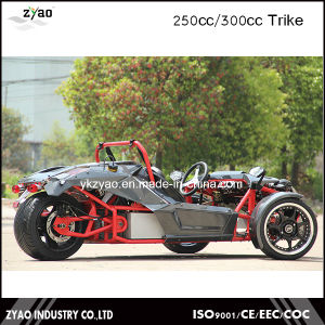 Ztr Trike Roadster 250cc EEC pictures & photos