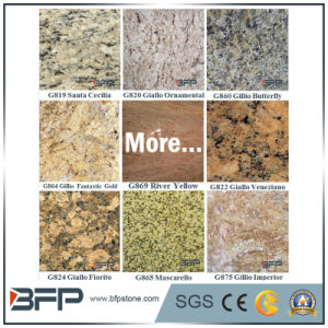 Popular Polished Yellow Granite Facade Tile for Exterior Wall/Floor pictures & photos
