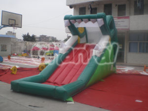 Commercial Grade Inflatable Water Slide for Childeren Chsl257 pictures & photos