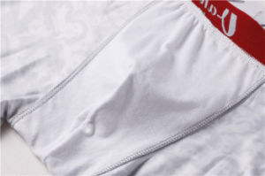 Compression Trousers Gym Bodybuilding Classic Printing Short for Men (AKNK-1026) pictures & photos