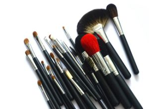 26pieces Beauty Equipment Cosmetical Tool Profressional Makeup Brush pictures & photos