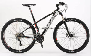 29inch Carbon Fiber Frame Mountain Bike pictures & photos