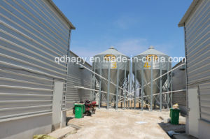 Modern Design of Prefabricated Poultry House pictures & photos