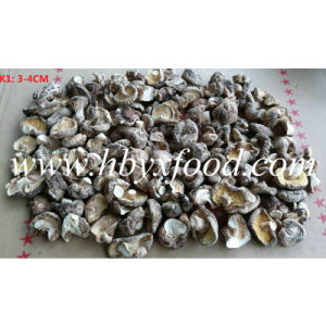 3-4cm Dried Delicious K Shiitake Mushroom pictures & photos
