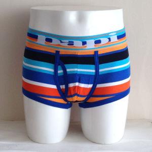 Fashion Man Light Colorful Striped Men Underwear pictures & photos