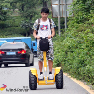 High Quality Stand up Electric Trick Scooter Electric Cycling pictures & photos