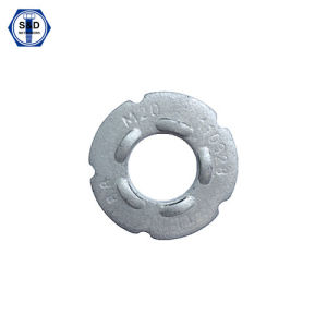 Dti Washers, F959/F959m Grade8.8&Grade10.9 H. D. G pictures & photos
