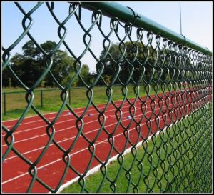 Diamond Galvanized Chain Link Wire Mesh Fence pictures & photos
