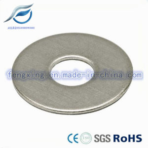 High Quality Flat Washer pictures & photos