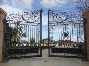 Modern Style Private Wrought Iron Garedn Gates pictures & photos