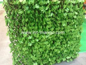 Eco-Friendly Plastic Artificial Willow Fence (MW16010) pictures & photos