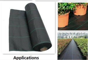 PP Non Woven/ PP Woven Geotextile for Weed Control pictures & photos