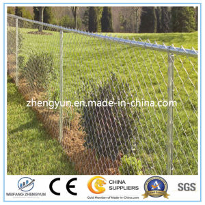 High Quality Cheap PVC Coated Galvanized Chain Link Fence pictures & photos