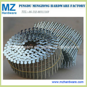 Electro Galvanized Wired Coil Nail of Smooth Shank pictures & photos