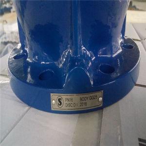 Dn40-Dn1000 Silent Type Check Valve pictures & photos
