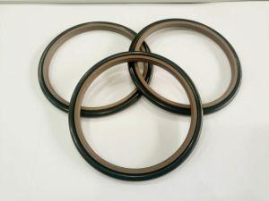 Good Flexible Polytetrafluoroethylene Glyd Ring pictures & photos