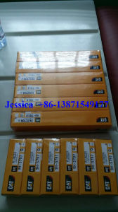 Disa Diesel Injector Nozzle 8n7005 pictures & photos