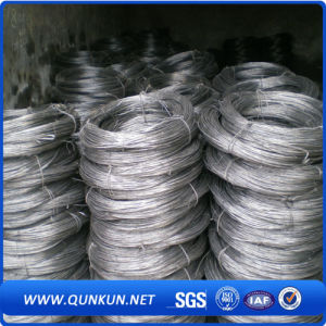 Hot Dipped Galvanized Iron Twist Wire on Sale pictures & photos
