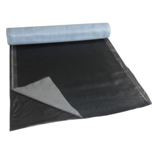 High Polymer Self Adhesive Waterproof Membrane pictures & photos