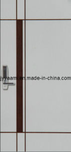 Metal Door / Steel Door (JY-01)