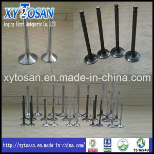 Inlet & Exhaust Valve for Engine Mitsubishi 2g23 pictures & photos