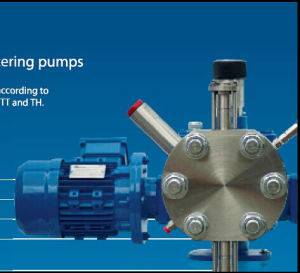 Seko Dosing Pump Tork Serial for RO Water Treatment pictures & photos