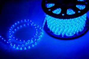 Fancy LED Rope Lighting Grow Lighting Blue Color pictures & photos