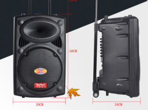 12 Inch Battery Speaker with 6600mAh Lithium Battery F6814s pictures & photos