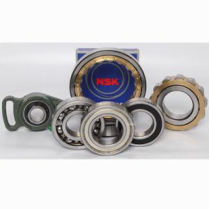 Original Japan Roller Bearing NSK Cylindrical Roller Bearing, Spherical Roller Bearing, Tapered Roller Bearing, Thrust Roller Bearing pictures & photos