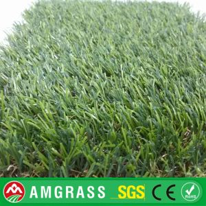 PE High Quality Allmay Artificial Turf and Landscaping Lawn Synthetic Grass pictures & photos