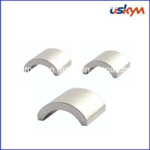 Customized Neodymium Arc Magnet pictures & photos