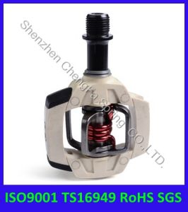 ISO9001ts16949 Motorcycle Torsion Spring