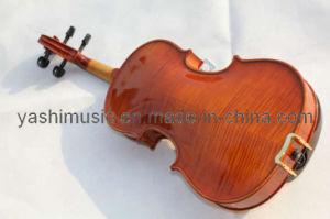 Advanced Varnished Violin (YSV011)
