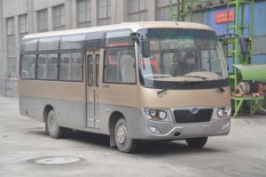 City Bus (LS6670)