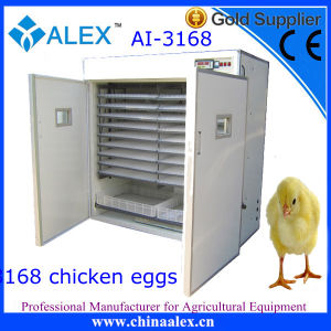 Favourable Price Large Industrial Incubator with CE Approved