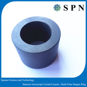 Permanent Ferrite Multipole Motor Rings Customized Magnet pictures & photos
