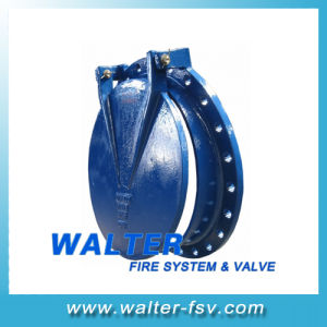 Cast Iron Flap Check Valve pictures & photos