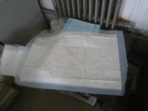 Underpad Quality Inspection/Quality Check/Quality Test pictures & photos