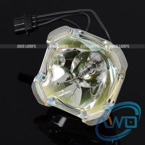 China Projector Lamp Bare Bulb 610 334 2788 Lmp108 610
